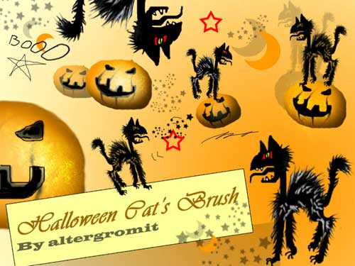 Halloween Cat's Brush by altergromit