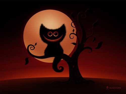 Vladstudio Halloween Kitten