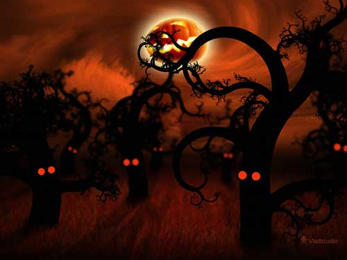 Halloween In The Midnight Forest Halloween Wallpaper