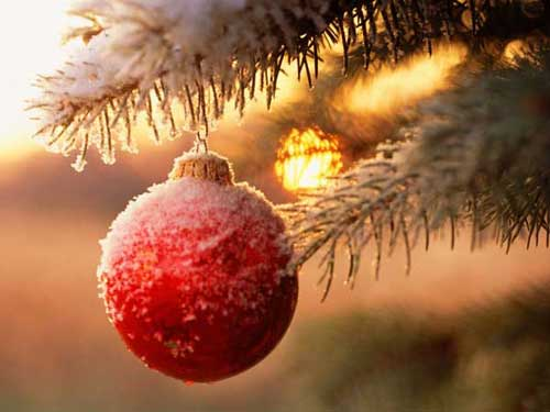 Best Christmas Images, Icons & Wallpapers - Globe in dim light Christmas Wallpaper
