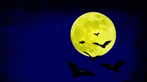 Halloween Wallpapers - Halloween Bat#2