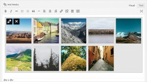 WordPress Version 3.9 - Gallery previews